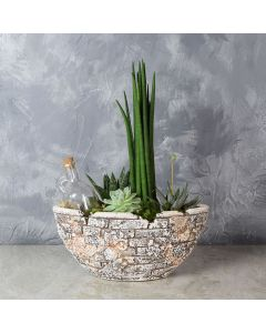 St. Lawrence Potted Succulent Garden, floral gift baskets, gift baskets, succulent gift baskets