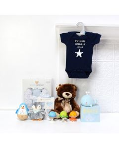 Baby Boy Fun Set, baby gift baskets, baby boy, baby gift, new parent, baby toys